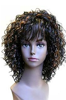 Ashley Hand Tied Monofilament Wig